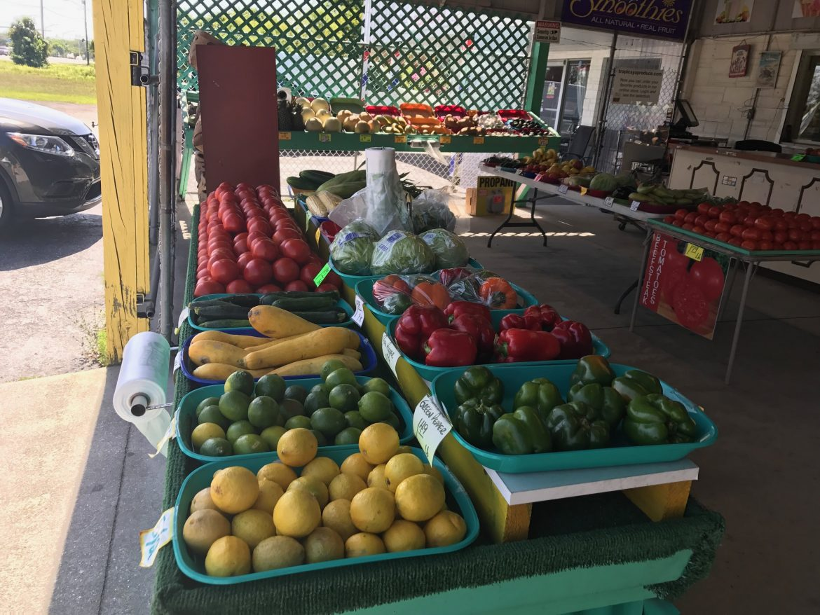 Cape Coral Farmers Market review